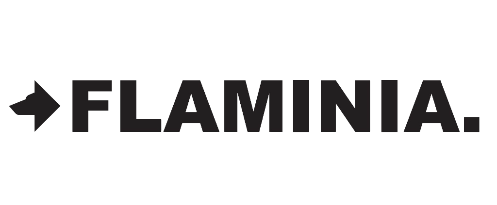 logo_flaminia-1024x423